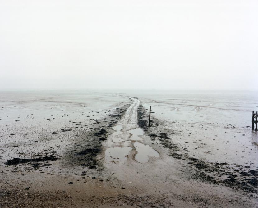 Horsey Island, Essex, March 2013